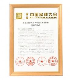中国品牌大shi
